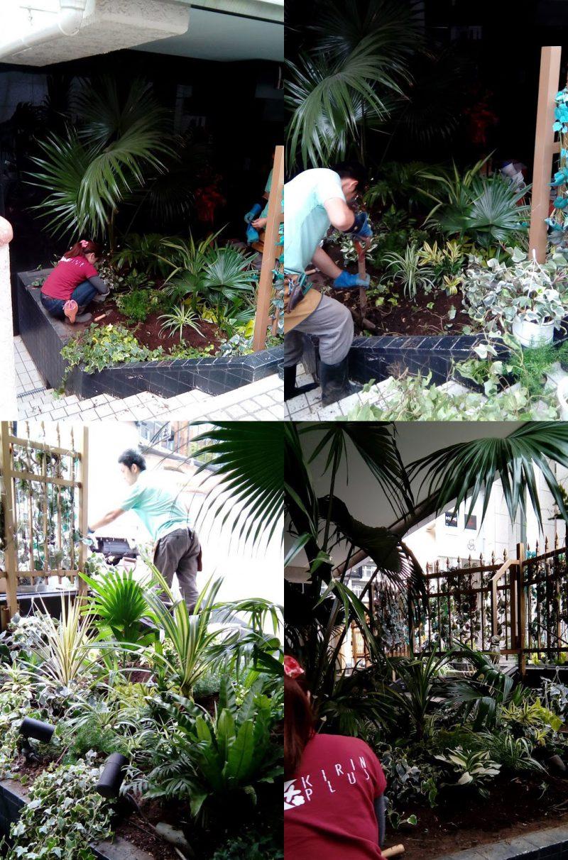 観葉植物を設置中の店舗作業