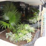 観葉植物により港区のワインバーがリゾート地を感じさせる外観に変貌